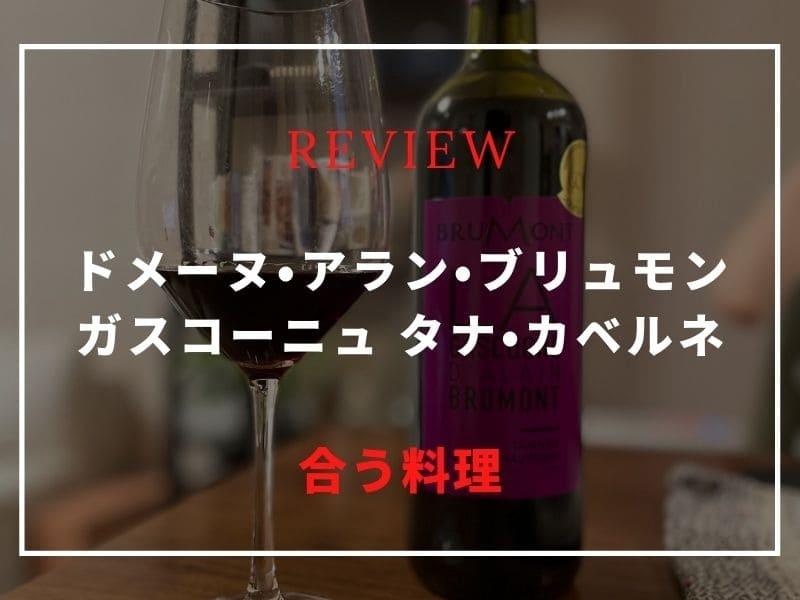 ドメーヌ・アラン・ブリュモン ガスコーニュ タナ・カベルネ ワイン